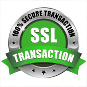 security-ssl